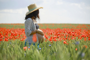Pregnant woman standing in sunny, idyllic rural field with red poppiesの写真素材 [FYI04323808]