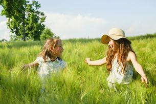 Happy, carefree sisters in sunny, idyllic rural green wheat fieldの写真素材 [FYI04323809]