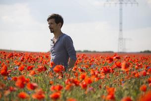 Man standing in sunny, idyllic rural red poppy fieldの写真素材 [FYI04323815]