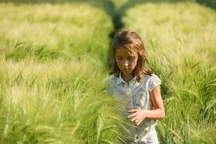 Curious girl walking in sunny, idyllic rural green wheat fieldの写真素材 [FYI04323822]