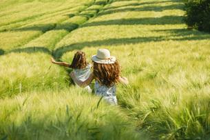 Playful, carefree girls running in sunny, idyllic rural green wheat fieldの写真素材 [FYI04323824]