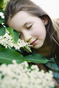 Serene girl leaning on blooming bushの写真素材 [FYI04323829]