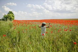 Girl running in sunny, idyllic rural red poppy fieldの写真素材 [FYI04323842]