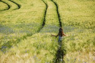 Carefree girl walking in sunny, idyllic rural field with wildflowersの写真素材 [FYI04323843]