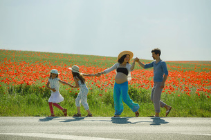 Happy pregnant family holding hands, walking along sunny rural red poppy fieldの写真素材 [FYI04323856]