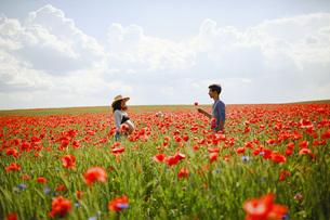 Pregnant couple in sunny, idyllic red poppy fieldの写真素材 [FYI04323862]