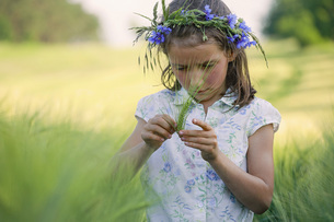 Curious girl with flowers in hair examining green wheat stalk in rural fieldの写真素材 [FYI04323871]