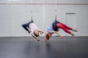 Modern aerialist dancers performing, hanging upside-downの写真素材 [FYI04323918]
