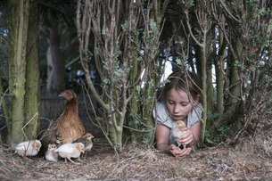 Girl holding baby chick under tree on farmの写真素材 [FYI04323922]