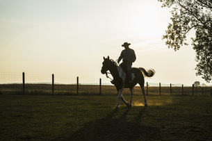 Silhouette cowboy riding horse on rural ranchの写真素材 [FYI04323939]