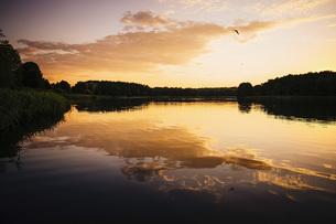 Tranquil, idyllic lake view at sunset, Barnin, Mecklenburg-Vorpommern, Germanyの写真素材 [FYI04324019]