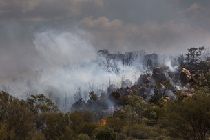 Wildfire burning, East McDonnell Ranges, Alice Springs, Northern Territory, Australiaの写真素材 [FYI04324200]