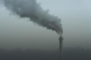 Smokestack emitting smoke, Neukoelln, Berlin, Germanyの写真素材 [FYI04324209]