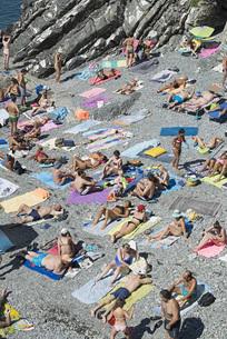 People sunbathing on sunny, rocky beach, Genoa, Liguria, Italyの写真素材 [FYI04324215]