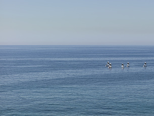 Sailboats engaged in sailing lesson on sunny blue ocean, Quinto district, Genoa, Liguria, Italyの写真素材 [FYI04324219]