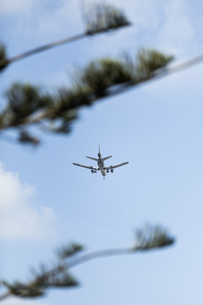 Airplane flying in sunny blue skyの写真素材 [FYI04324244]