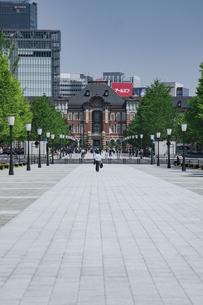 新緑の行幸通りと東京駅の写真素材 [FYI04330448]