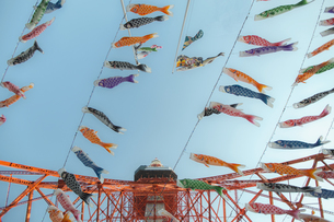 東京タワーと鯉のぼりの写真素材 [FYI04330470]