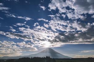 ふもとっぱらから望む早朝の富士山の写真素材 [FYI04330504]