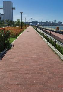 豊洲ぐるり公園の遊歩道とレインボーブリッジの写真素材 [FYI04330515]