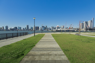 豊洲ぐるり公園と晴海方面のビル群と客船の写真素材 [FYI04330529]