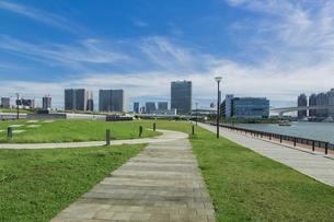 豊洲ぐるり公園と有明のビル群の写真素材 [FYI04330530]