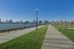 豊洲ぐるり公園と晴海、芝浦方面のビル群の写真素材 [FYI04330531]
