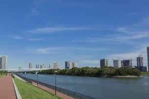 豊洲ぐるり公園と東雲のビル群の写真素材 [FYI04330533]