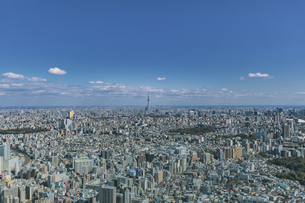 東京スカイツリーと東京の街並みと青空の写真素材 [FYI04330586]