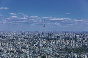 東京スカイツリーと東京の街並みと青空の写真素材 [FYI04330588]