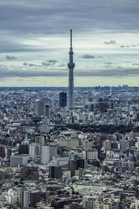 東京スカイツリーと東京の街並みの写真素材 [FYI04330599]