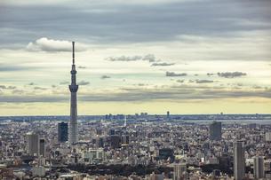 東京スカイツリーと東京の街並みの写真素材 [FYI04330600]