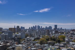 豊島区から望む新宿副都心の高層ビル群と家並みの写真素材 [FYI04330643]