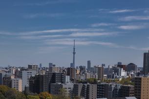 東京スカイツリーとビル群と青空の写真素材 [FYI04330650]