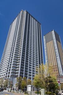 東池袋のタワーマンションと青空の写真素材 [FYI04330652]