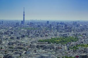 東京スカイツリーと東京の街並みと青空の写真素材 [FYI04330672]