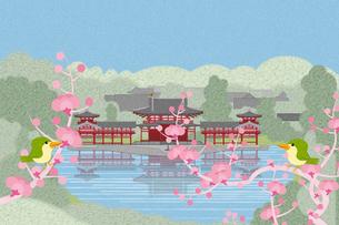 梅の花咲く平等院 イラストのイラスト素材 [FYI04330724]