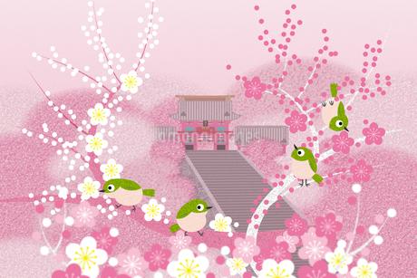 春の鶴岡八幡宮 イラストのイラスト素材 [FYI04330739]
