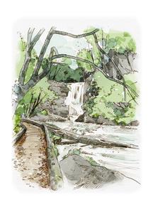 水彩画 新緑と渓流のイラスト素材 [FYI04330782]