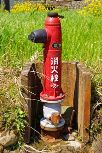 消火栓の写真素材 [FYI04330897]