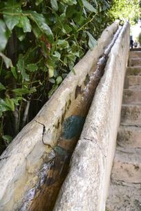 アルハンブラ宮殿のヘネラリーフェ離宮の写真素材 [FYI04331372]