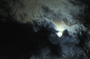 Germany, Bavaria, Full moonの写真素材 [FYI04332687]
