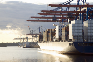 Germany, Hamburg, container ship in Waltershofer Hafen at Buの写真素材 [FYI04332692]