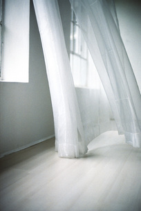 Blowing white curtainの写真素材 [FYI04332701]