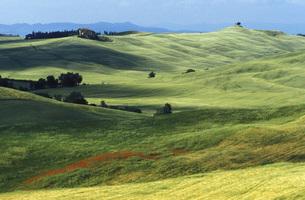 Italy, Tuscanyの写真素材 [FYI04332746]