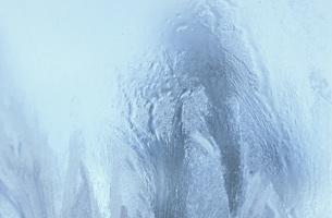 Frost flowerの写真素材 [FYI04332803]