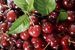 Cherries, close-upの写真素材 [FYI04332834]