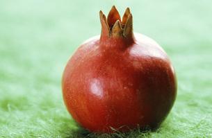 Pomegranateの写真素材 [FYI04332842]