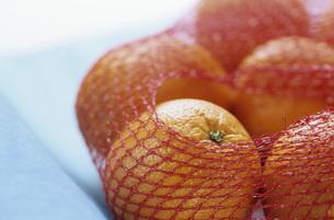 Oranges in net, close-upの写真素材 [FYI04332847]