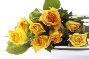 Bouquet of yellow rosesの写真素材 [FYI04332861]